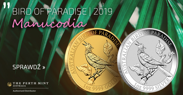 Bird of Paradise 2019 | Manucodia